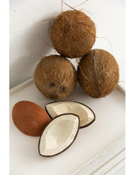 Bijtspeeltje Coco the Coconut - Kokosnoot