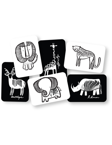 Art Cards - Safari