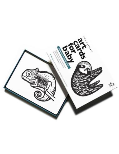 Wee Gallery Art Cards - Rainforest