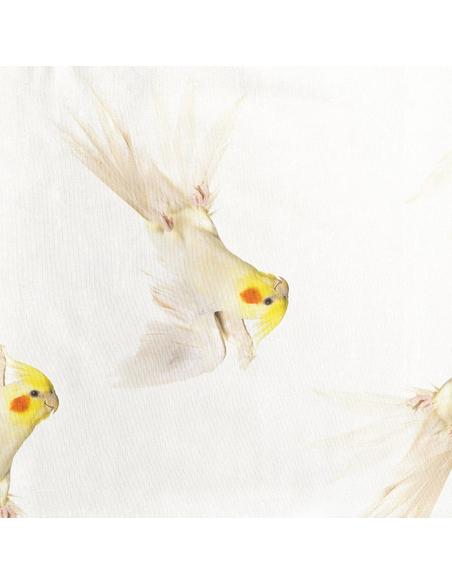 Pepe Bird T-shirt Kids