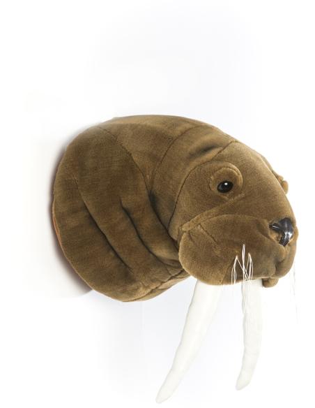 Dierenkop Walrus