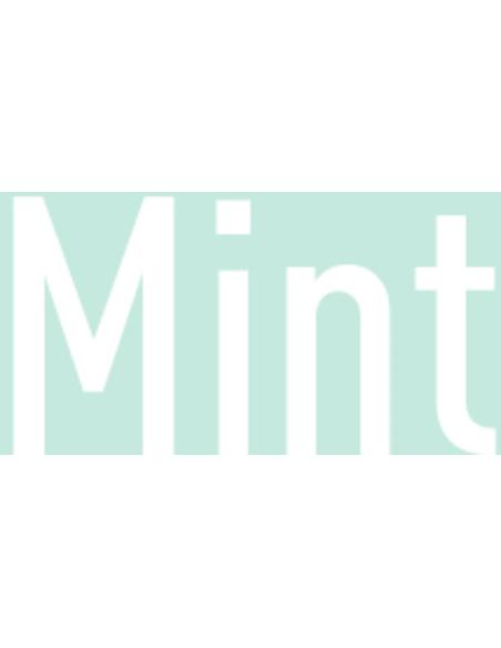 Fopspeen 6-18 mnd Mint